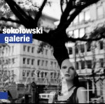 0111<span style='color:#00239C;'>(001)</span> Sokołowski - Galerie